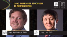 Yves De Koninck wins SfN Education Award
